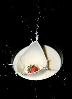Stop action of a strawberry splashing into a bowl of milk.
