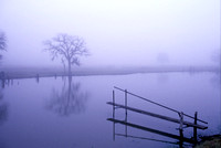 Heavy fog and dew blanket the fishing pond in the early dawn light.