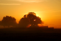 Sunrise across the countryside on a foggy morning.