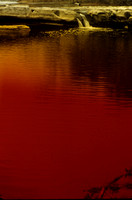 Dramatic red filter creates a eerie effect on the pond.
