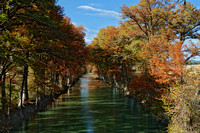 Giant Cypress trees in fall color line the bank of the Medina river, creating cool shade on the water.