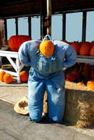 Scarecrow in blue coveralls and a pumkin head.