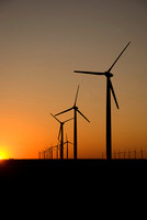 Sunset silhouette view of a wind turbine field.