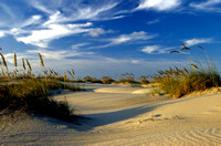 Clean sand, marshgrass, and blue sky are calling to Padre.