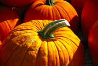 Detailed, close-up view of the pumpkin top.